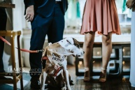 philadelphia-wedding-james-webb-photography-serena-and-mike-ceremony34